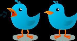 twitter_bird_evandro